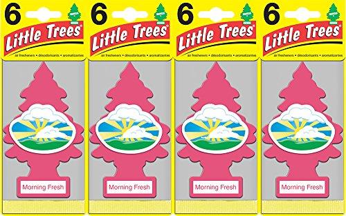 Little Trees Morning Fresh Air Freshener, (Pack of 24)