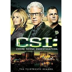 CSI: Crime Scene Investigation - The 13th Season