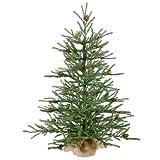3' Carmel Pine Cone Artificial Christmas Tree in Burlap Base - Unlit