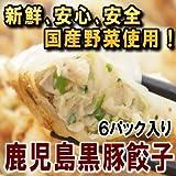 鹿児島黒豚生餃子セット ( 6P ) 【お土産 ギフト】