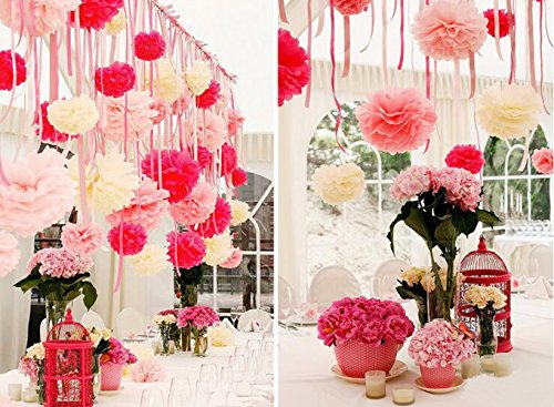 Bekith 30 Piece 10 inch Tissue Paper Pom Poms Flower Ball Wedding Party Outdoor Decoration