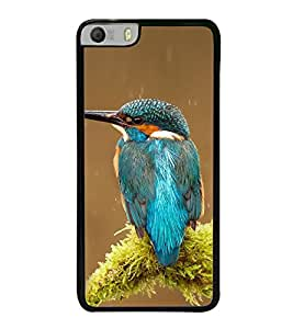 Colourful Bird 2D Hard Polycarbonate Designer Back Case Cover for Micromax Canvas Knight 2 E471