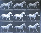 Motion and Document Sequence and Time: Eadweard Muybridge and Contemporary American Photography