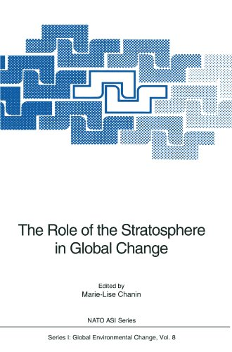 The Role of the Stratosphere in Global Change (Nato ASI Subseries I:)