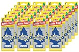 51HQkz3lpcL. SL160  Air Freshener   New Car Scent   24 Pack
