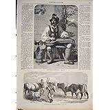 Pecore 1858 della Turchia dei Bovini Da Carne dell'Agricoltore del Compositore di Tyrolien