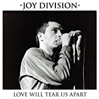 Love Will Tear Us Apart [7 inch Analog]