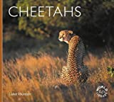 Cheetahs (Worldlife Library)