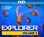 National Geographic Channel Explorer [HD]: 21st Century Sex Slaves [HD]