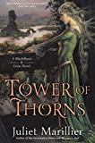 Tower of Thorns: A Blackthorn and Grim Novel