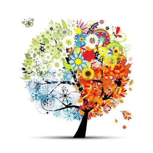 Wallmonkeys Four Seasons Spring Summer Autumn Winter Art Tree Peel and Stick Wall Decal 24-Inch Height by 24-Inch Width