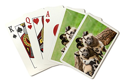 African Wild Dogs Playing Card Deck