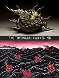 img - for RIO TOYONAGA: AWAKENING book / textbook / text book
