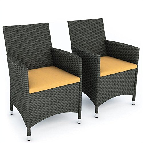 Sonax C-104-DCP Cascade Two Chair Set picture
