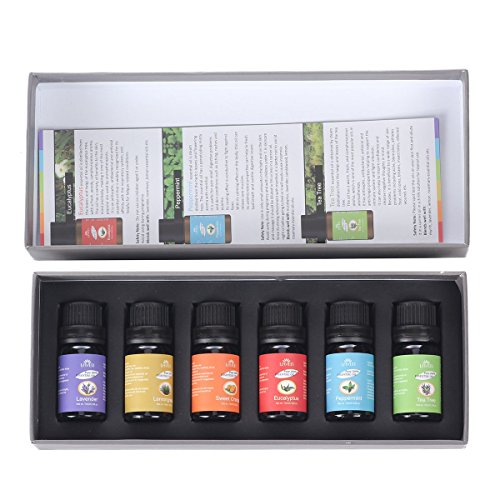 lavenr-top-6-bottles-100-pure-essential-oils-best-buy-gift-set-6-10ml-therapeutic-grade-essential-oi