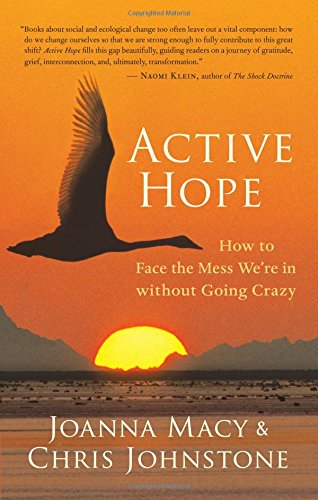 active-hope-how-to-face-the-mess-were-in-without-going-crazy