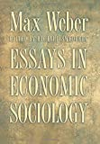 Image of Essays in Economic Sociology