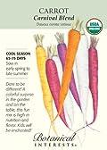 Organic Carrot Seeds Carnival Blend 1000 Seeds