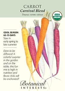 Organic Carrot Seeds Carnival Blend