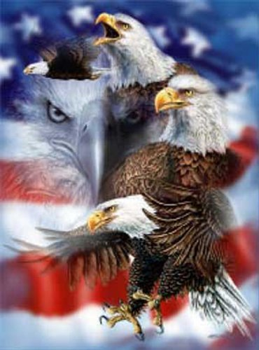 Bald Eagles Collage Within The American Flag Throw Blanket - 100% Fleece front-546272