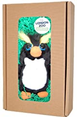 Boxed Ricky the Penguin adoption with soft toy