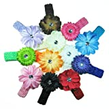 The Trendy Turtle - 12 Assorted 3-in-1 Large Flower Hair Clip Bows with Soft Stretch Crochet Child Headbands fits Infant Baby to Toddlers to Youth Girls - Mix of Gerber Daisy Lily & Peony