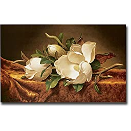 Magnolias on Gold Velvet Cloth by Martin Johnson Heade Premium Stretched Canvas Art (Ready-to-Hang)
