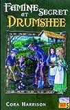 Famine Secret at Drumshee (Drumshee Timeline)