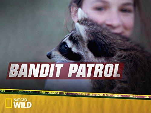 Bandit Patrol Season 1