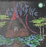 Bring Down The Curtain LP (Vinyl Album) US Alchemy 1989