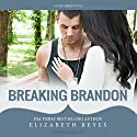 Breaking Brandon: Fate, Book 2 Audiobook by Elizabeth Reyes Narrated by Roy Samuelson