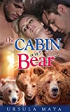 The Cabin was Bear: Sassy BBW Alpha Werebear pack BDSM mega menage erotic romance (Alpha Werebears Book 4)