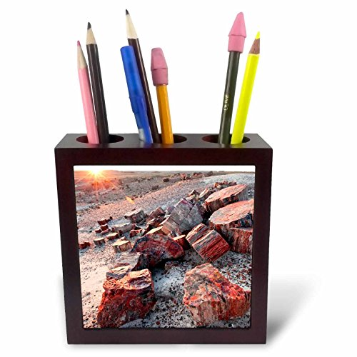 Danita Delimont - Deserts - Alien Landscape, Petrified Logs, Petrified Forest NP, Arizona - 5 inch tile pen holder (ph_229766_1) (Petrified Wood Tray compare prices)