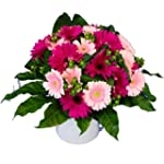 The Gorgeous 'Gerbera Gem' Bouquet -...