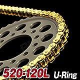 Big-One(ビッグワン) バイク チェーン 交換 520-120L Oリング カシメジョイント 強化Type ゴールド 21136