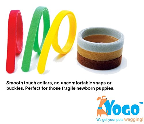 Puppy Collar for Newborn Puppies Helps you Keep Track and Identify Pups and Kittens Easily. Set of 12 Extra Long, Reusable and Washable Velcro ID Bands for All Dog Breeds. Simplify your Breeding Process Now! wheat breeding for rust resistance