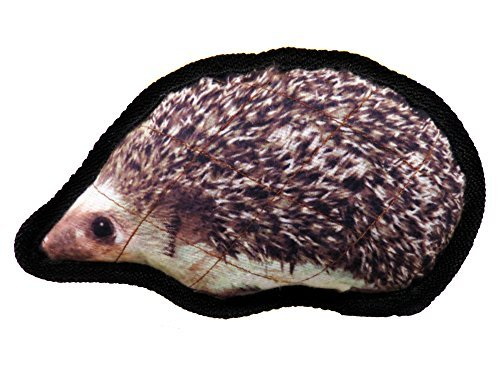 dog-toy-brawny-bruiser-rocky-hedgehog-8-inch-we-squeak-by-scoochie-pet-products