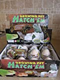 MazaaShop Hatch'em Growing Pets Lizard Reptile Eggs, Fun Toy for Kids, Set of 3
