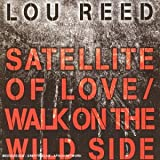echange, troc Lou Reed - Satellite Of Love 2004
