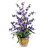 Dancing Lady Silk Orchid Arrangement in Purple