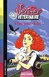 echange, troc Emily Costello - Jenifer, apprentie vétérinaire : Il faut sauver Rufus !