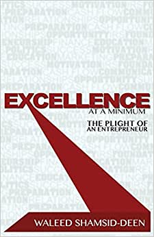 Excellence At A Minimum: The Plight Of An Entreprenuer