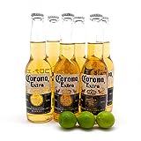 コロナビール 6本+キーライム3個セット