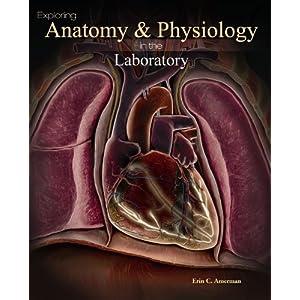 human anatomy and physiology amerman pdf free