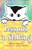 Lessons In Stalking: Adjusting to Life With Cats