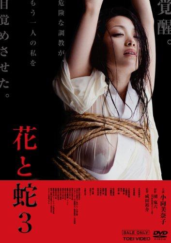 [小向美奈子 本宮泰風 小松崎真理 琴乃 睦五朗] 花と蛇3【DVD】