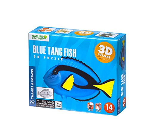 azul-tang-fish-3d-puzzle