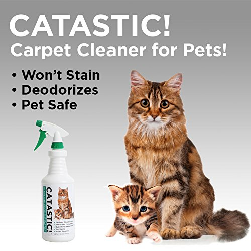 Catastic Stain And Odor Eliminator