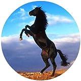 Tortenaufleger Tortenfoto Aufleger Foto Bild Pferd rund ca. 20 cm  *NEU*OVP*