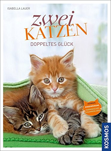 Zwei katzen doppeltes gl ck auswahl eingew hnung for Wohnungsgestaltung ideen